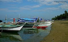 [Donsol Sorsogon/ May Is money stopping you from visiting philippines? Click my pin to find out how you could solve this issue. Visit Philippines, How To Find Out, Boat, Money, Dinghy, Silver, Boats