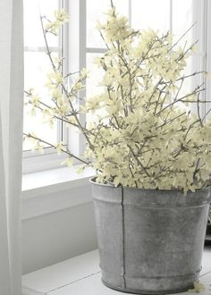 Air Kissed: spring decorating... paint the pail a bright color for a pop or leave rustic- love the rustic look!