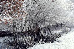 Winter Pond III by Aenea-Jones on DeviantArt