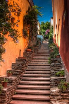Colioure Steps by Kiff Backhouse on 500px