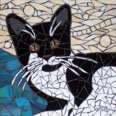 Billi - Hindi for cat   Flickr: Intercambio de fotos
