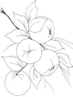 Pimentas e frutas para pintar   Desenhos e Riscos - Desenhos para colorir