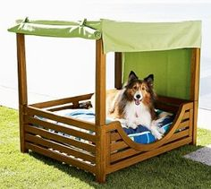 Chesapeake Canopy Dog Bed That is pretty classy for Reagan and Lincoln.