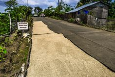 Rice Drying on the side of the road enroute to Maa-o Bacolod City, Some Pictures, Cant Wait, Philippines, Sidewalk, Rice, Travel, Buenos Aires, Viajes