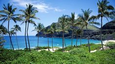 Hawaii #!:  American Life Expectancy Continues to Rise - weather.com