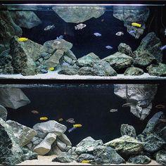 Die 10 Besten Bilder Zu Diy 3d Background Malawi Tank Aquarium Ruckwand Ruckwand Selber Machen