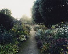 mike perry's garden project Landscape Architecture, Landscape Design, Garden Design, Garden Paths, Garden Landscaping, My Secret Garden, Adventure Is Out There, Garden Projects, Garden Inspiration