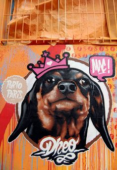 LE CHIEN in Paris by Mr Dheo