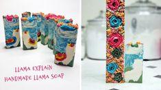 MAKING LLAMA EXPLAIN LLAMA SOAP