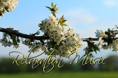 Requiem Mass in D Minor Wolfgang Amadeus Mozart's final Masterpiece was commissioned in mid 1791 by the Austrian count Franz Von Walsegg, as a Tribute to the. Calming Music, Relaxing Music, Tarot, D Minor, Youtube, Healing, Yoga, Beautiful, Astrology