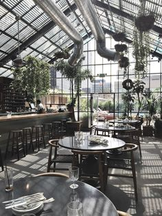 Commissary at The Line Hotel Los Angeles – Greige Design Glass house cafe Greenhouse Cafe, Greenhouse Plans, Greenhouse Restaurant, Casas Country, Cafe House, Interior Plants, Rooftop Bar, Cafe Bar, Cafe Design