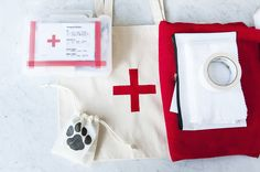We have a DIY First Aid Kit for dogs today! via The Daily Dog Tag with photos © Alice G Patterson Photography
