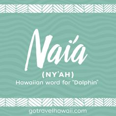 Nai& - Hawaiian Word - Dolphin parents can upon arrival the youngest . - Nai& – Hawaiian Word – Dolphin parents may suffer from the arrival of the youngest of them - Baby Girl Names Unique, Cute Baby Names, Pretty Names, Boy Names, Hawaiian Girl Names, Hawaiian Phrases, Hawaiian Quotes, The Words, Hawaiian Words And Meanings
