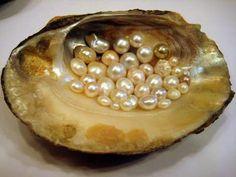 Perlas y Piedras Semipreciosas - Joyería Botticelli