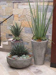 Below are over 100 local Orange County Gardens that . - Gardening 2019 - Do you need inspiration? Below are over 100 local Orange County Gardens that …, - Florida Landscaping, Front Yard Landscaping, Backyard Landscaping, Landscaping Ideas, Backyard Ideas, Modern Landscaping, Desert Landscape Backyard, Rogers Gardens, Pot Jardin