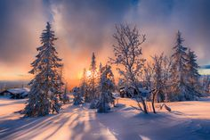 This shot is taken this afternoon  You are welcome to visit my Facebook Page ----- >>    Jørn-Allan-Pedersen-Photo