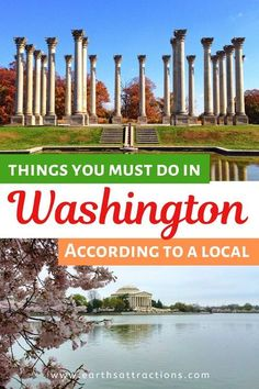 Things to do in Washington Dc, USA. Use this local's guide to Washington DC when planning your trip. This article includes the top Washington DC things to do from the Lincoln Memorial to the White House, from the Washington Monument to the Washington Monument, US Capitol Building, and beyond. The best Washington restaurants and the best Washington hotels are also includes. Useful Washington travel tips are also added. Create your Washington bucket list using this article. #washington… Usa Travel Guide, Travel Usa, Travel Guides, Travel Tips, Travel Destinations, Travel Advise, Travel Abroad, Travel Packing, Lincoln Memorial