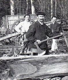 vieux métiers des forêts : L'équarisseur