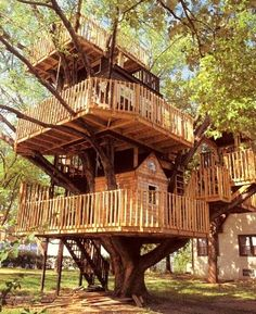 tree houses for adults | Journey of the Featherless: Real life treehouses!