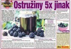 Ostružiny 5x jinak. Apple, Homemade, Apple Fruit, Home Made, Apples, Hand Made