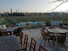 Vineyard restaurant@ Urlice
