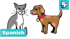 Animal names in Spanish with BASHO & FRIENDS - Animales - YouTube