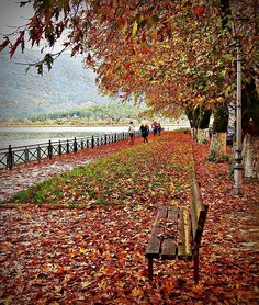 The Secret Greece is a cultural portal showcasing articles for Greece, suggesting destinations, gastronomy, history, experiences and many more. Greece in all Peaceful Places, Romantic Places, Autumn Flowers, Autumn Colours, Autumn Leaves, Flowering Trees, Greece Travel, Fall Season, Natural Wonders