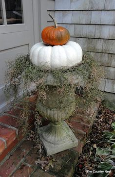 Cute for the front porch  scary #container