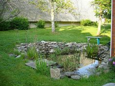Outdoor Classroom Pond by jlkwak, via Flickr