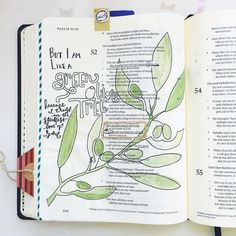 """A little green inspired Bible journaling on this St. Patty's Day... And what vivid image of what trusting God can look like: """"But I am like a green olive tree in the house of God. I trust in the steadfast love of God forever and ever."""" Psalm 52:8 #biblejournaling #biblejournalingcommunity #journalingbible #illustratedfaith #handlettering #leftyletterer #ipaintinmybible #shepaintstruth #soulscripts #encouragementgallery #lampandlight #watercolor #abcs_green #handletteredabcs by maribethhinton"""