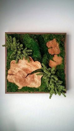 """Beautiful Preserved Plants: Mood Moss, Sheet Moss, Wood Disks, artificial Donkey Tail Succulents. Frame: Wood with a dark walnut satin-finish. Origin: Hawaii, """"Made in Hawaii""""SpecificationsSold By Designs Reimagined, LLC Width 24"""" Depth 3"""" Height 24"""" Weight 17 lb. Materials 100% natural selected preserved moss arrangement, wood frameDesigner Designs Reimagined, LLC"""