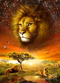 Lion Dawn Digital Art