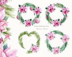 Christmas Watercolor Wreath, Poinsettia Holly Steams, Floral Clip Art Scarlet Pink Flower Clipart, Holiday christmas wreath christmas bundle by KoelschArtLab on Etsy Watercolor Clipart, Wreath Watercolor, Floral Watercolor, Watercolor Christmas, Pink Christmas Decorations, Christmas Diy, Christmas Wreaths, Christmas Cards, Holiday