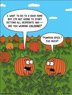 This one made me laugh! 67 Fall & PSL Memes That Will Make You Laugh - after a long day at work, sit back and laugh a little with these fall and pumpkin spice latte memes. Halloween Humor, Halloween Cartoons, Theme Halloween, Happy Halloween, Halloween Ideas, Halloween Quotes, Halloween Pictures, Holidays Halloween, Halloween Pumpkins