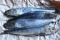 Sardines by Andrea_Nguyen, via Flickr