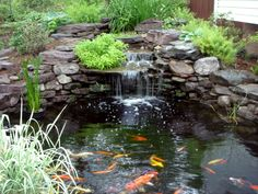 Pin Small Pond And Fall Foliage Reflection Katahdin Region Maine Usa on Pinterest