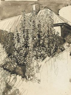 Pen and ink wash. THE ARTIST'S GARDEN, CIRCA 1940 Charles Mahoney