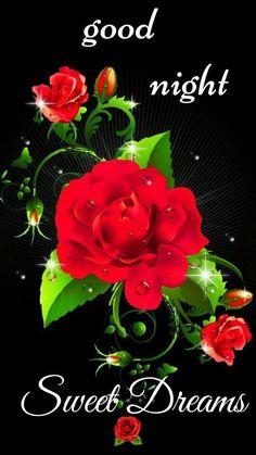 Good Night All, Good Night Image, Good Night Quotes, Good Night Greetings, Good Night Messages, Bengali Poems, Good Knight, Evening Quotes, Night Gif