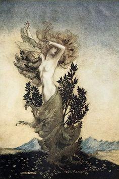 Illustration by Arthur Rackham.