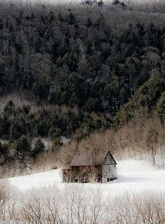 Country winter |ღஜღ~|cM
