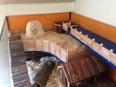 [Aquarium] Glasbehälterverbund x für Dsungi Murphy - Gehegevorstellung - www. Big Hamster Cages, Ferret Cage, Hamster Toys, Pet Cage, Hamster Stuff, Hamsters, Gerbil, Rodents, Mouse Cage
