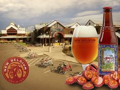Top 15 Craft Breweries in the US