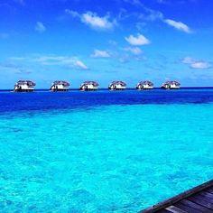 Shades of blue. Maldives. #travelnoire #maldives : @louisajumeirahtalent by travelnoire