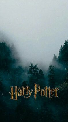 Harry Potter is an idol for an entire generation. Which is why today we have gathered 70 ideas for a magical Harry Potter wallpaper. Harry Potter Tumblr, Harry Potter Tag, Hery Potter, Images Harry Potter, Arte Do Harry Potter, Harry Potter Facts, Harry Potter Hogwarts, Harry Potter World, Cover Harry Potter
