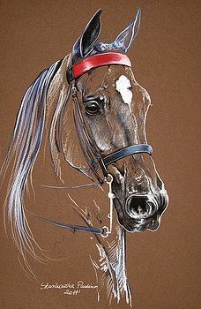 Saddlebred horse by Paulina Stasikowska - اسب - Art Painting, Pastel Art, Animal Art, Animal Drawings, Art Drawings, Art, Watercolor Horse Painting, Animal Paintings, Art Pictures
