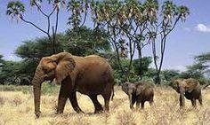 Il Sudafrica di #EvolutionTravel con tour individuali, di gruppo e fly & drive - Travelnostop.com