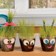 Grass plant face for the Girl Scout Daisy - welcome to the Daisy flower garden journey
