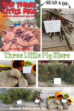 Three Little Pigs Store: Create a store inspired by the three little pigs while helping preschoolers learn about needs vs wants and money.