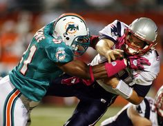 Cameron Wake will LAY YOU OUT