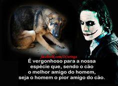 65 Melhores Imagens De Curinga Jokers Quotations E Thinking About You
